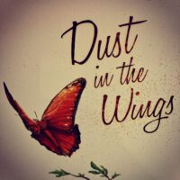 Dust in the Wings - náhled krabice